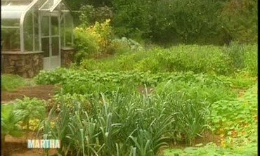 Organic Seed Catalogs and Gardens