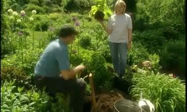 Raising the Height of Your Garden