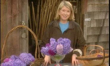 How To Arrange Hyacinths in a Bowl