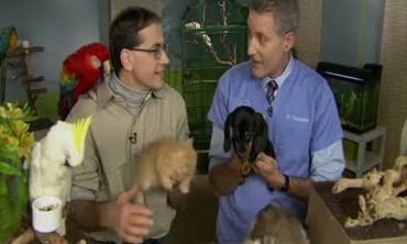 Marc Morrone on Proactive Pet Care