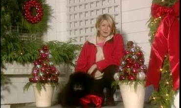 Christmas Decorating with LuAnn Reck