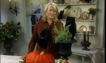 Halloween Black Birds For Decorating