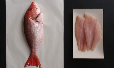 How to Fillet a Whole Fish Like a Pro