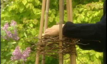How to Use Garden Supports for Vines
