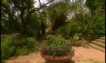 Limestone's Natural Beauty in Gardens