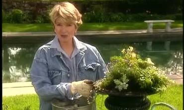 Beautifying and Planting Outdoor Urns