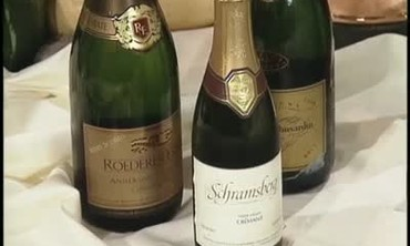 Champagne and Sparkling Wine Tutorial