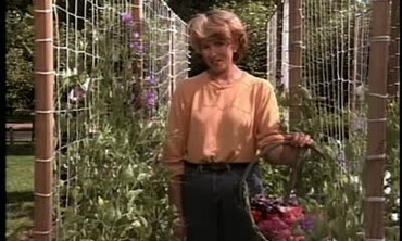 How To Build a Trellis for Sweet Peas