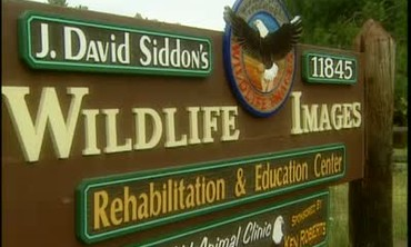 Wildlife Images Rehabilitation Center