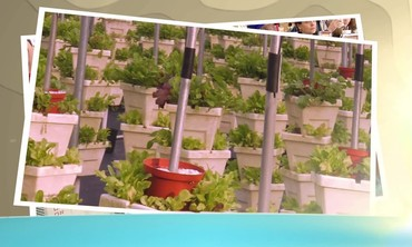 106 Florida Agriculture Open Tease.m4v