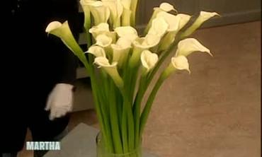 An Arrangement with Giant Calla Lilies