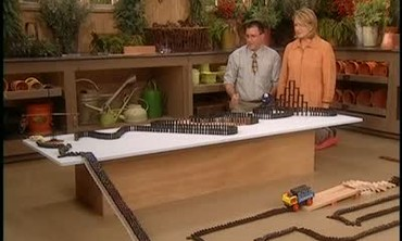 Domino Toppling Display With Scott Suko
