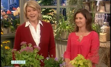 Fall Perennials with Heather Stephenson