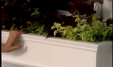 How to Build a Window Box for Your Home