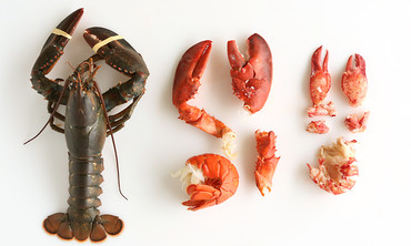 How to Remove Cooked Lobster from Shell