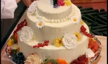 Live in Las vegas Wedding Special Pt. 5