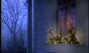 Winter Greenery Window Boxes
