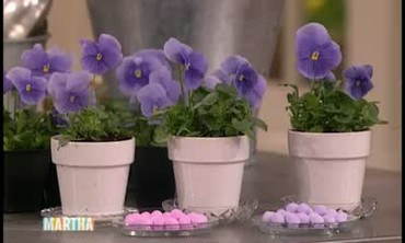 How to Make Pansy and Viola Centerpieces