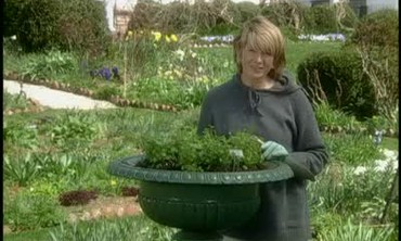 Martha Stewart Plants Harebell in an Urn