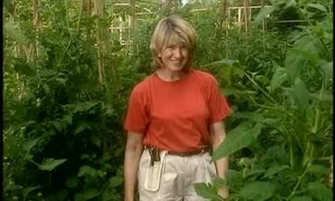 Martha Stewart Checks on Her Tomato Garden