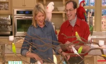 Pet Parakeets with Pet Expert Marc Morrone