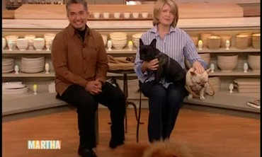 A Visit with the Dog Whisperer Cesar Millan