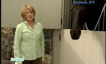 Cantitoe Corners Visit with Friesian Horses