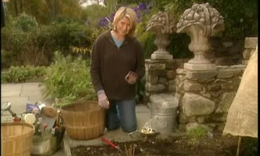 How To Enrich the Soil of Perennial Gardens