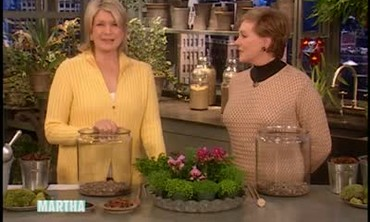How to Plant a Terrarium with Julie Andrews
