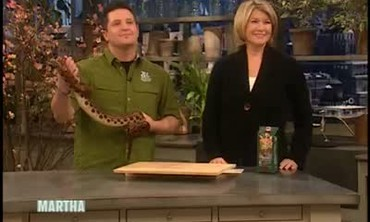 Rainbow Boa Snake and Saving the Rainforest