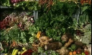 Vegetable Varieties at Chef's Garden in Ohio