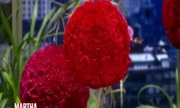 Carnation Arrangements with Bronson Van Wyck