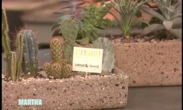 How to Create Your Own Hypertufa Pots, Part 2