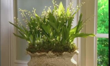How to Make a Lily of the Valley Arrangement
