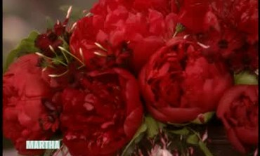 Tips for Growing Peonies with Kathleen Gagan