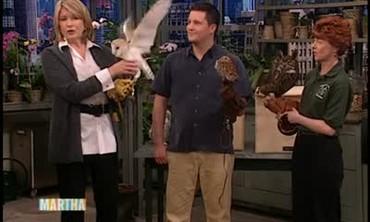 National Wildlife Federation Owl Preservation