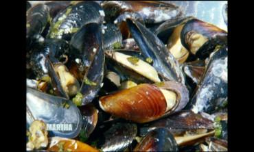 A Visit to Penn Cove Shellfish in Washington