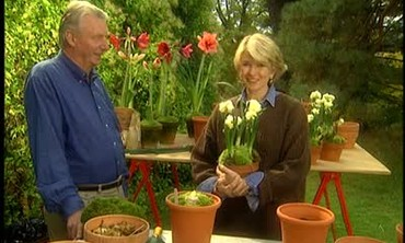 Jan Ohms Shares His Expertise in Potting Bulbs
