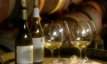 Tasting Chapellet Wines From Bottle and Barrel