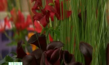 Tips for Stunning Tulip and Lilly Arrangements