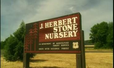 Profiling The J Herbert Stone Nursery in Oregon