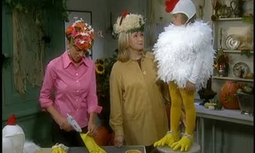 Martha Stewart Makes a Halloween Chicken Costume