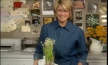 Martha Stewart Offers Gardening Advice to Guests