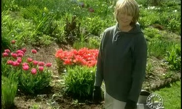 Martha Stewart Shares Tips on Self Sowing Annuals