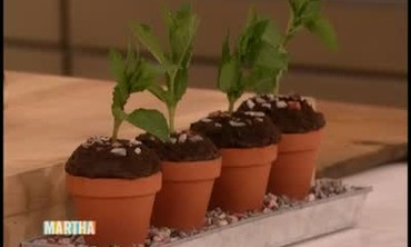Mini Flower Pot Chocolate Cakes with Marlo Thomas