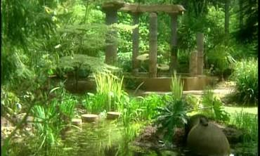Tour of the Woodland Garden at Heronswood Nursery