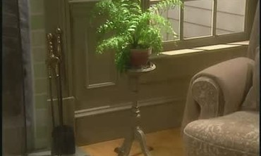 Convert a Wooden Ashtray Stand into a Plant Holder