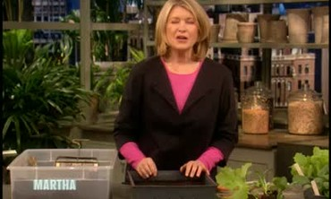 How To Propagate Plants Using Homemade Soil Blocks