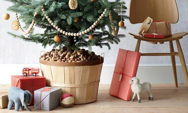 Good Things: Three Ways to Reinvent Potting Your Holiday Christmas Tree