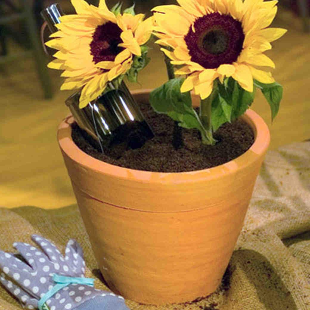 Martha Stewart & Jane\u0027s Dirt Cake